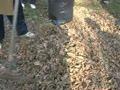 Социально значимые объекты, 06.11.2013 г.
