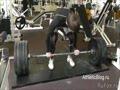 Правильные силовые тренировки в тренажерном зале дают результат!